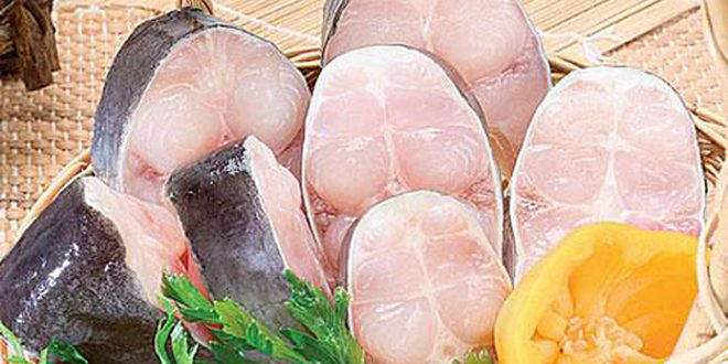فروش عمده ماهی اوزون برون منجمد