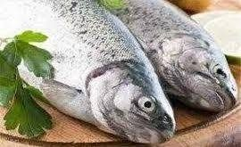 ماهی اوزون برون جنوب