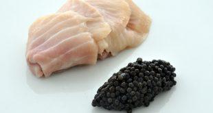 خاویار و محصولات ماهی خاویار در رایبد خاویار