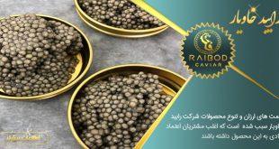 قیمت روز خاویار پرورشی در ایران