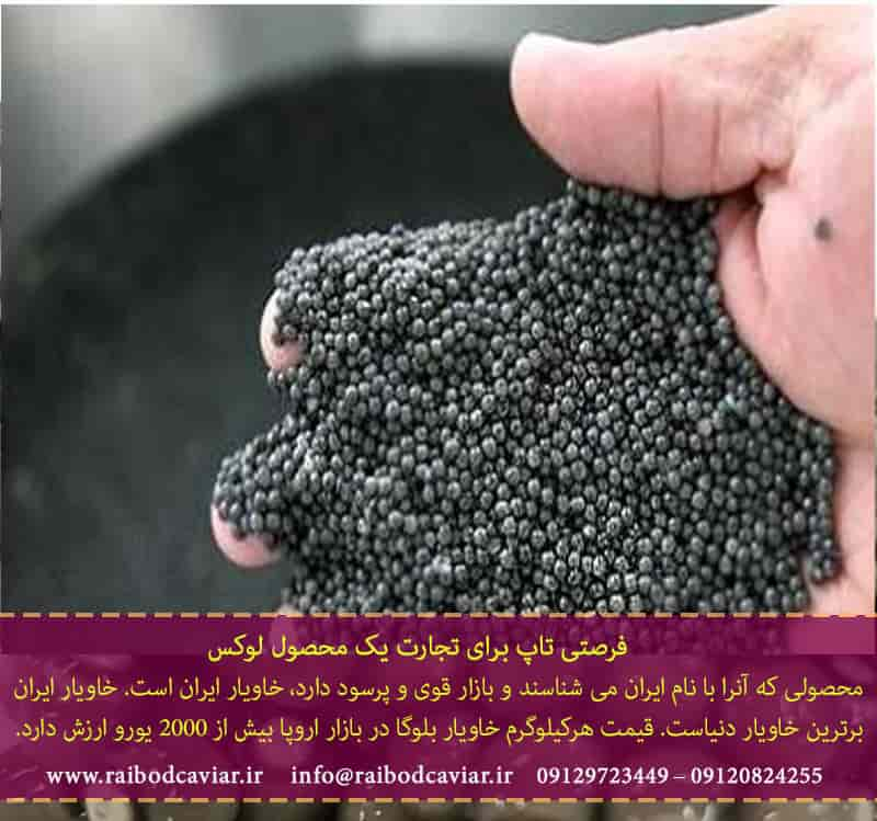 تولید خاویار در گیلان