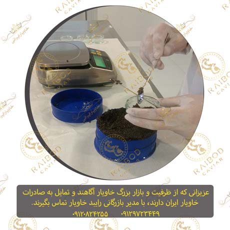 مجموعه تولید کننده خاویار ایرانی
