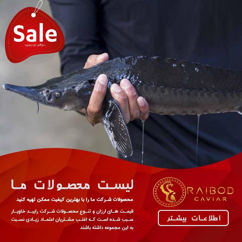 فروش ماهی خاویار ایرانی