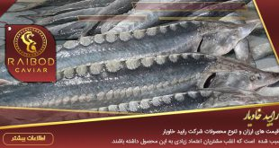 لیست قیمت انواع ماهی خاویار